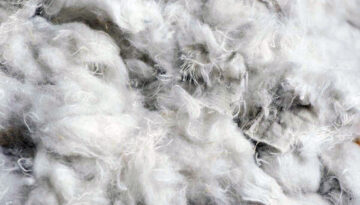 Recycled cotton