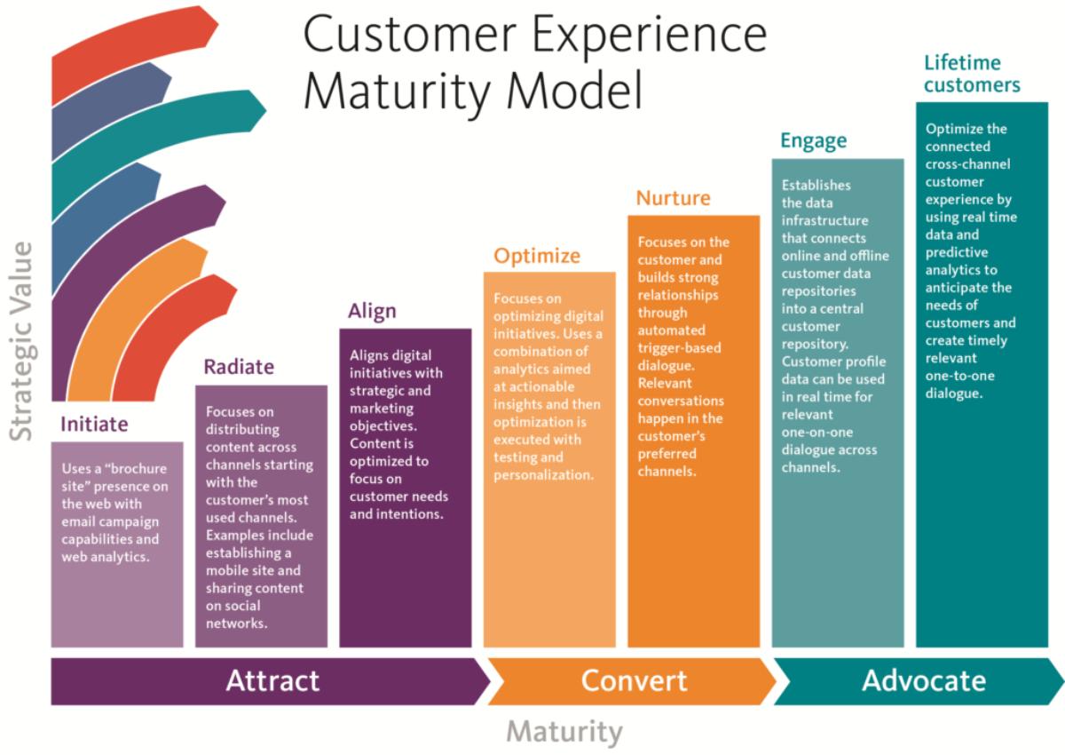Customer Experience Assesment