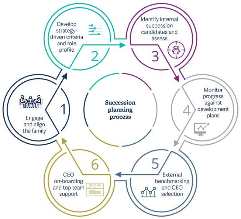 <b>The Succession Planning Process</b>
