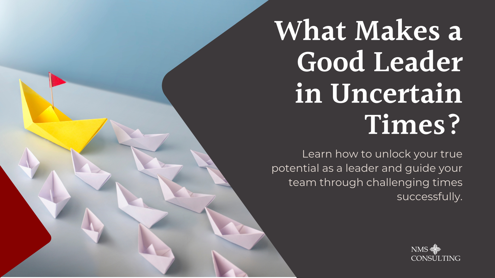 TW_ What Makes A Good Leader - March Webinar
